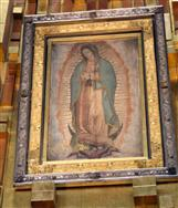 Our Lady of Guadalupe Inspires Chicago Illuminator