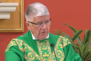 Humble Catholic Parish Priest Cuts through the Clutter on Elections and Non-Negotiable Catholic Values, REGARDLESS OF POLITICAL PARTY
