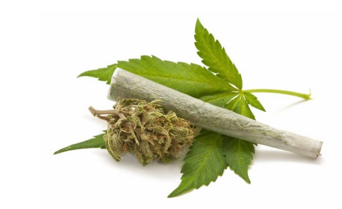 Medical Science: What Politicians, the Media and For-Profit Marijuana Advocates Do Not Tell You About Pot Use