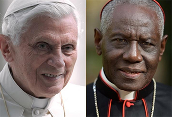 Did Pope Benedict XVI write new book with Cardinal Robert Sarah New Book on Priestly Celibacy and Crisis of the Catholic Church?